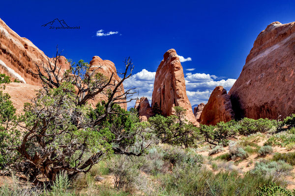 """Bild: """"rotes Felsenmeer"""", the arches NP, Utah"""