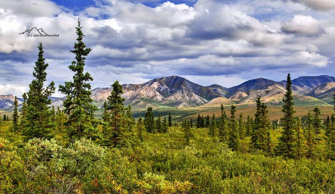 "Bild: ""colourful Alaska Range"", Denali NP"