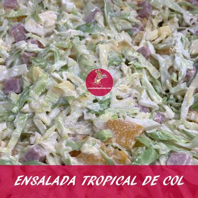 ENSALADA TROPICAL DE COL