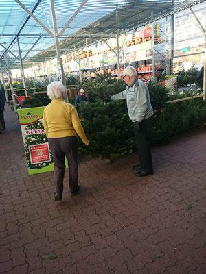 ホームセンター クリスマスツリー売場