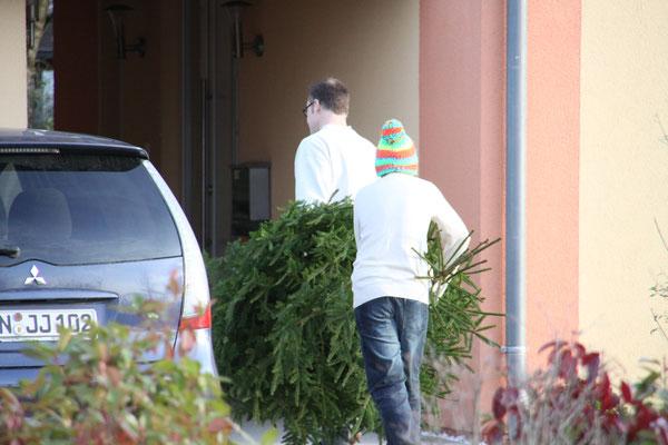 世界遺産の島 ライヒェナウ島 クリスマスツリーを運び込む親子