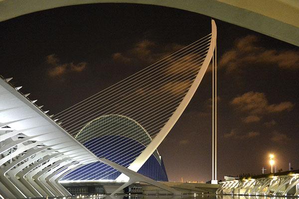 Musée des sciences. Valencia Espagne