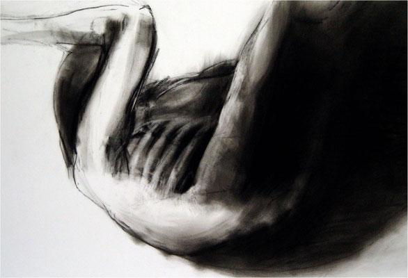 Verwandlung 5, Kreide auf Papier, 2005, 100 x 70 cm