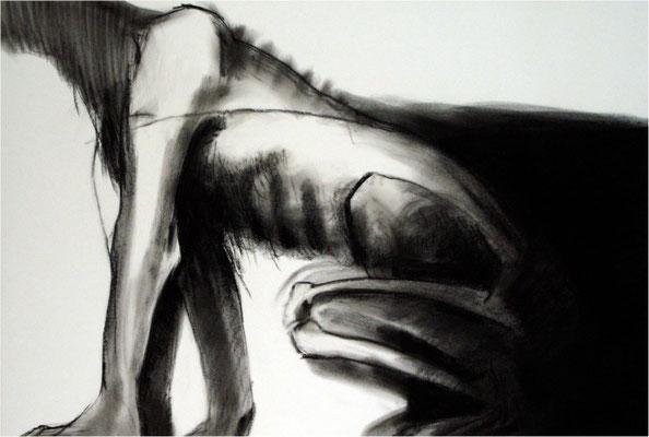 Verwandlung 1, Kreide auf Papier, 2005, 100 x 70 cm