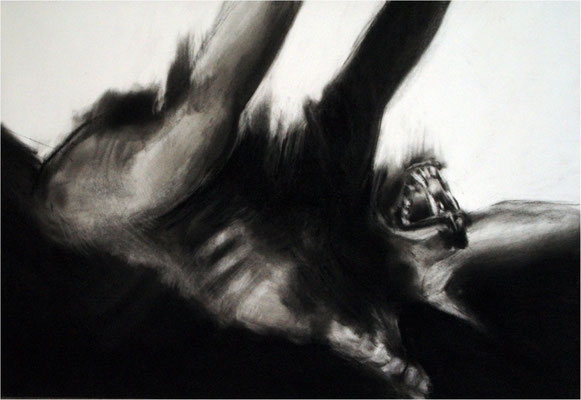 Verwandlung 9, Kreide auf Papier, 2005, 100 x 70 cm