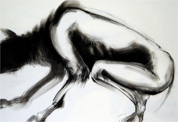Verwandlung 3, Kreide auf Papier, 2005, 100 x 70 cm