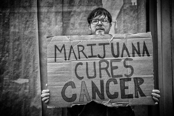Marijuana cures ....