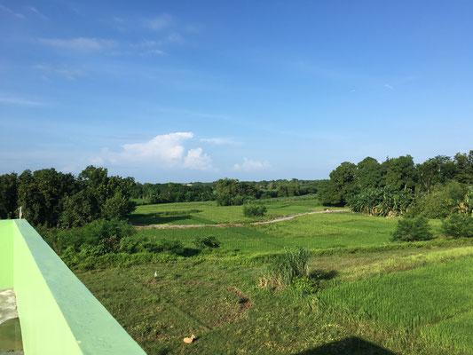 日本の田園風景のような当校東側