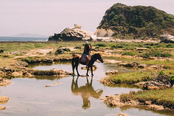 海岸沿いで乗馬もできます