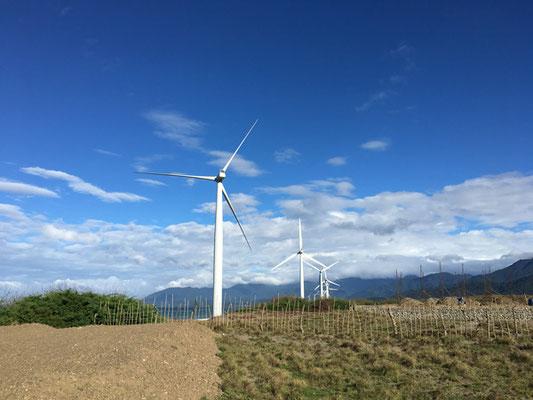 ずらりと並ぶ風車に圧倒されます
