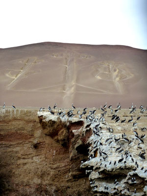 Ancient geoglyph in the hillside (like the more famous Nazca lines)