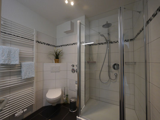 Die große Duschkabiene mit mdodernen Amarturen