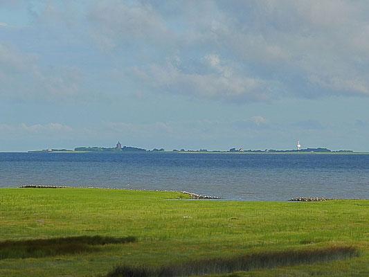 Die Insel Neuwerk - mit Fernglas zum Greifen nah.