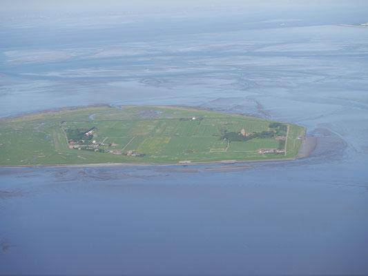 Die Insel Neuwerk