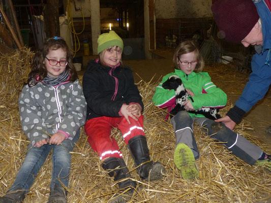 Mädels im Stall, ein Mädchen hat eine Ziege auf dem Arm
