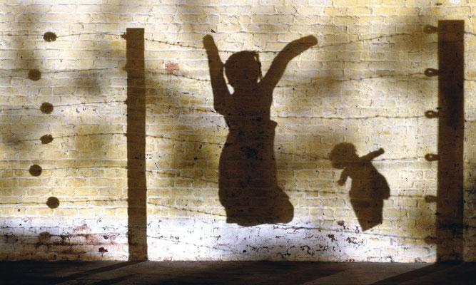 Les Ombres Barbelés  (photographie laminée sous plexiglas - 120 x 180 cm)