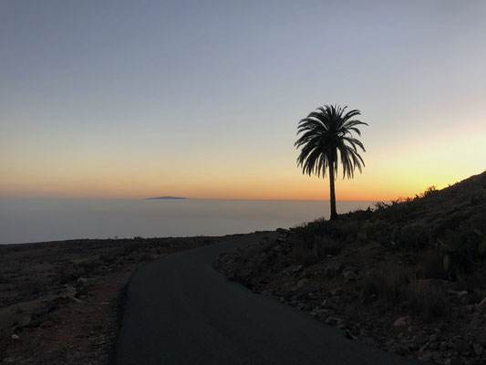 The lonely palm at sunset with view to El Hierro