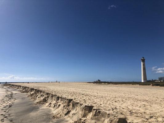 Endless beaches on Fuerteventura