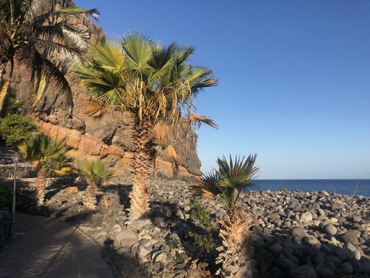 Hotel Jardin at Playa Santiago - La Gomera