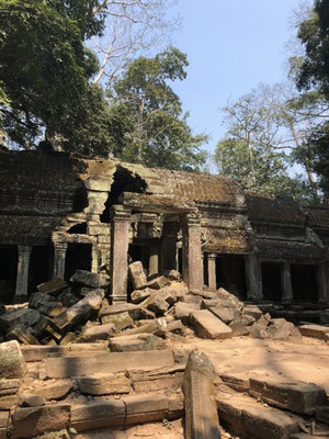Some buildings of Ta Prohm are collapsed