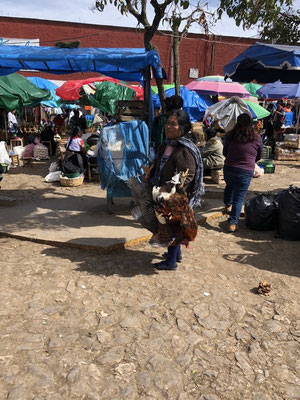 Some woman selling still live chicken