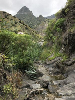 Last walks in La Gomera _ Hermigua 06/2021