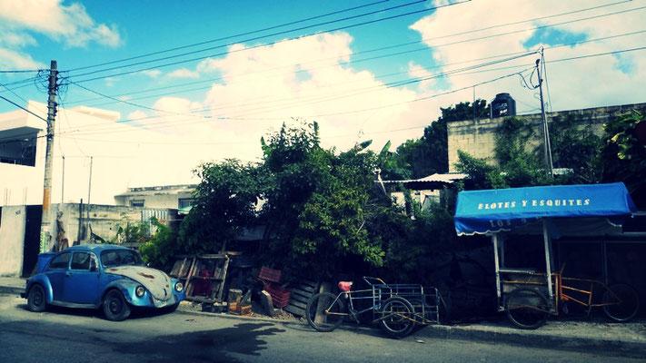 Streets in Puerto Morelos & a VW Beetle
