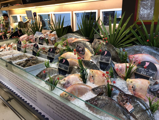 Very lovely display of fish in a fancy grocery store in Phuket, Thailand