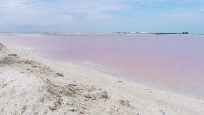 The Pink Lake at Las Coloradas