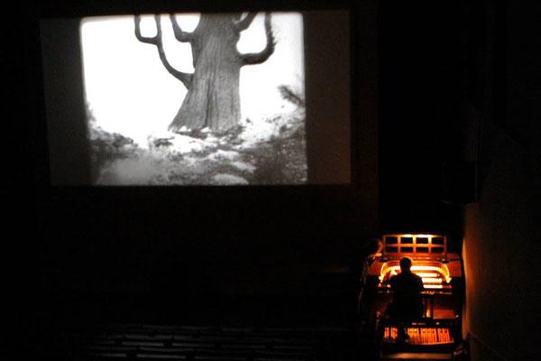 Die Nibelungen. 2. Teil: Kriemhilds Rache...  Begleitet von Wolf an der Kinoorgel im Grassimuseum Leipzig 2013