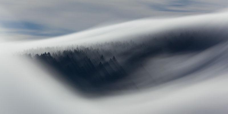 Nebel und Vollmond im Schwarzwald