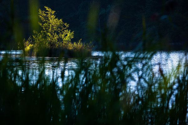 Erste Sonnenstrahlen am Lac du Vernois