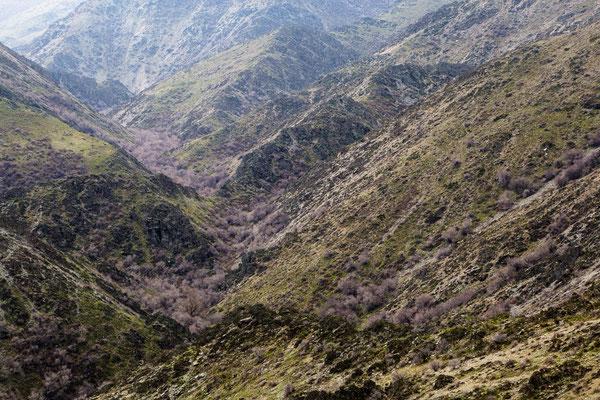Im Karatau-Gebirge