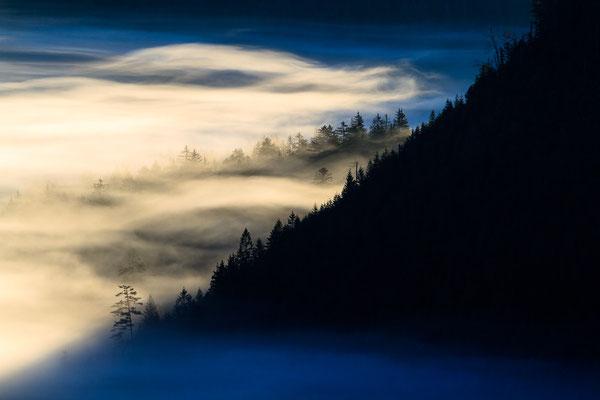 Nebel über dem Wilden See