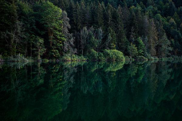 Spiegelung am Lac de Bonlieu