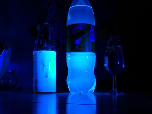 Kastanienzweig im Wasser, Tonicwater und Wasser im Schwarzlicht: Gespenstische Fluoreszenz im Alltag