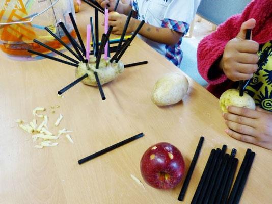 Druck: Kann man mit einem Trinkhalm ein Loch in einer Kartoffel machen?