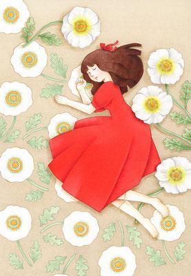 「眠りの花」