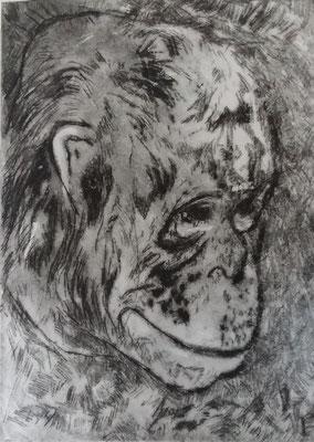 De Denker. lijnets  18 x 12,5 cm