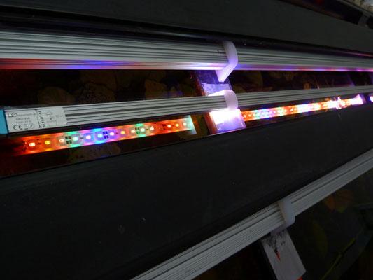 Spezial LED-Leiste - das komplete Lichtspektrum für Pflanzen