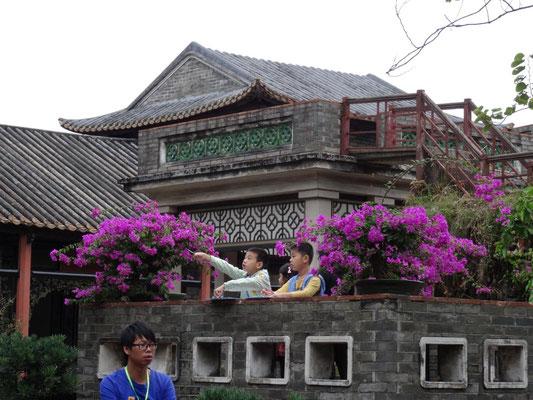 china-schüleraustausch - naturwissenschaften an der, Terrassen ideen