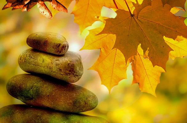 Galets et feuilles d'automne