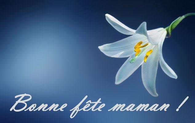 Fête des mères au lys blanc