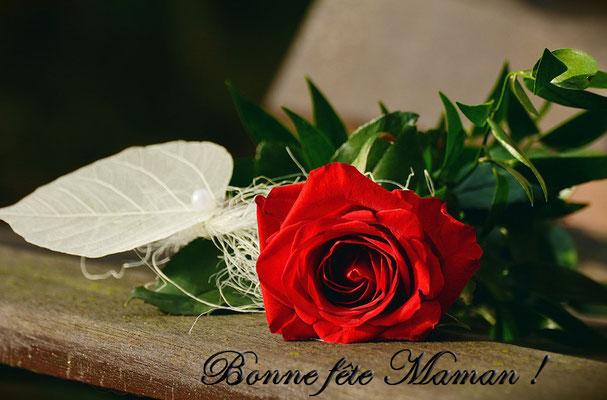 Fête des mères à la rose