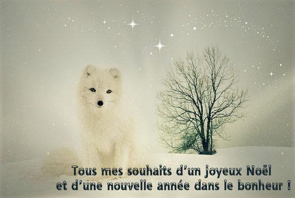 Le chien blanc