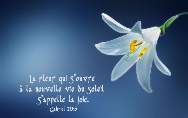 Fleur de joie