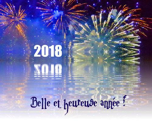 Belle année 2018