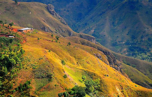Montagne d'Haïti