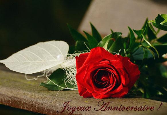 Anniversaire rose rouge