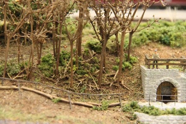 24.11.2013   Der umliegende Waldbewuchs konnte nun angegangen werden.